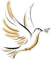 _colombe_paix